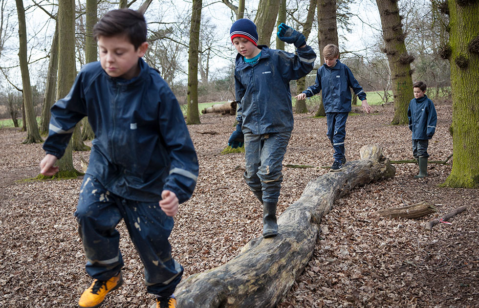 gosfield school forest school